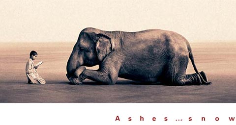 ashes snow1 Ashes and Snow de Gregory Colbert   Fotografia, documental